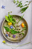 Various garden and wild herbs as ingredients for wild herb salad
