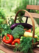 A basket of summer vegetables on a garden bench
