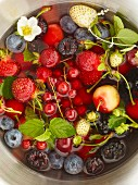 Fresh berries and cherries in a bowl of water