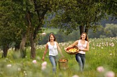 Two young women with baskets of freshly picked fruit in an orchard (Austria)