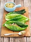 Junge Weisskohlblätter mit Bulgur-Champignon-Füllung (ungekocht)