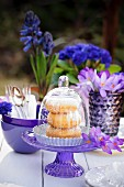 Doughnuts under a glass cloche on a table outside decorated with crockery and blue and purple flowers