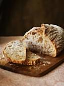 Rustic white bread, sliced