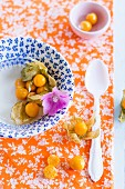 Fresh physalis on a plate and on a floral patterned cloth