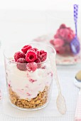 Raspberry parfait with cereals