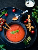 Tomato soup with grissini and fresh basil in a soup bowl