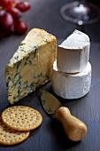 Stilton, Ziegenkäse, Cracker und Käsemesser