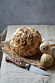 Celeriac and parsley root on a piece of jute