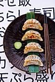 Gyoza auf Teller mit Essstäbchen (Japan)