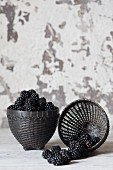 Fresh blackberries in black baskets