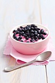 Greek yoghurt with fresh blueberries