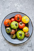 Various tomatoes on an enamel plate