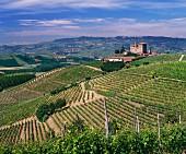 Castello di Grinzane und ein Teil des Carzello Weinbergs von Giordano, Grinzane Cavour, Piemont, Italien