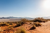 Barren desert landscape in NamibRand – private reservation in Namibia