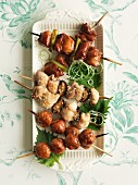 Yakitori chicken skewers (Japan)