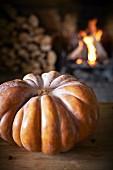 A large Muscade de Provence pumpkin