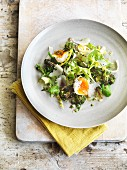 Broccoli salad with egg and Parmesan cheese