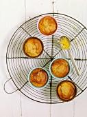 Mini gluten-free lemon cakes