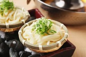Udon noodles with spring onions (Japan)