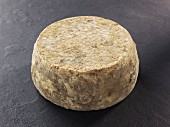 Chevrotin des Bauges (French goat's cheese)