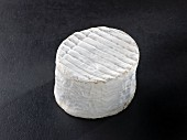 Chaource (French cow's milk cheese)