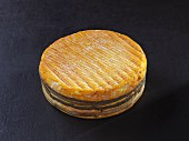 Livarot (French cow's milk cheese)