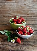Frische Erdbeeren mit Blättern und Blüten in Schalen auf Holzuntergrund