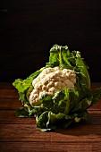 Organic cauliflower on a wooden surface