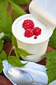A potato of sheep's milk yogurt with raspberries on a garden table