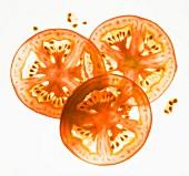 Back lit tomato slices