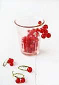 Redcurrant in a glass with redcurrant rings in front of it