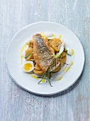 Perch fillet with potato salad, spring onions and egg