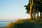 Abenddämmerung an der Steilküste nahe Bad Doberan, Ostseeküste