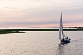Captain Bernd Kruse's sailing boat near the Neuendorfer Bülten, a chain of small, reed-covered islands on the north-eastern edge of the Saaler Bodden