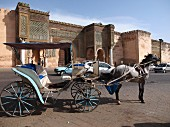 A horse and coach in front of His Majesty's Palace in Meknes, one of the four royal cities in Morocco