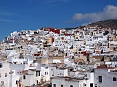 The view of the Medina of Tetouan in the morning, Morocco
