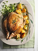 Braised chicken with an olive stuffing and roast potatoes