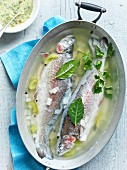 Poached trout in broth served with a mustard and herb sauce