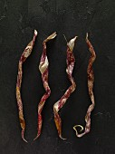 Abstractly shaped borlotti bean pods drying out on a slate