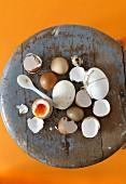 Verschiedene Eier, Eierschalen und weich gekochtes Frühstücksei auf Vintage Hocker