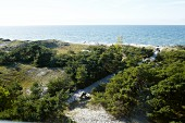 A view of the Baltic Sea from the Darss lighthouse
