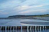 Blick auf die Vitter Bucht mit Holzpfählen in Abenddämmerung, Vorpommersche Boddenlandschaft
