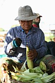 A man shucking corn in Thailand