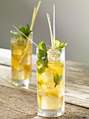 Gingko iced tea with fresh mint