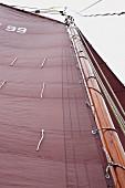 Traditionell mit Teer, Talg, Lebertran und Ochsenblut bearbeitetes Segel eines Segelbootes