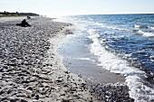Darss west beach on the Baltic Sea