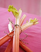 Fresh rhubarb stalks on a pink tablecloth
