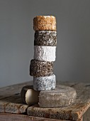 Various types of goat's cheese from Normandy