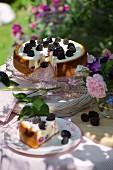 White chocolate and blackberry cheesecake