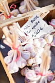 Garlic on a market stall in France